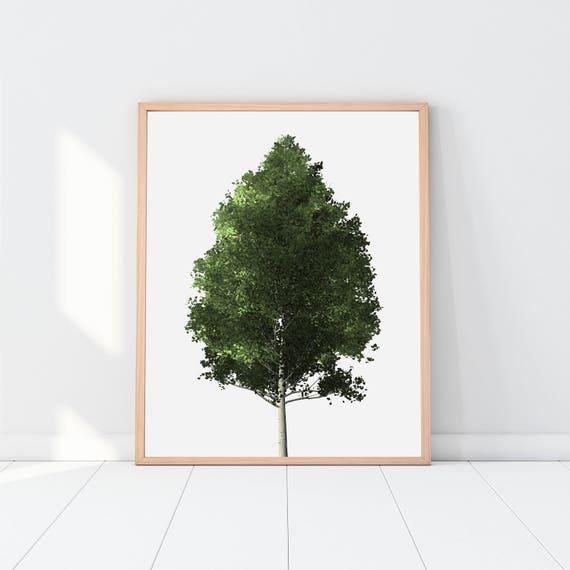 photograph regarding Printable Trees named Tree Printable, Trees, tree print, tree artwork, tree poster, pine tree, woods decor, cabin stylish, woodland, crops, leaves, mountain decor, wooden