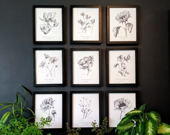 Set of 9 Flower Botanical Art Prints, in graphite, by artist Kristen Johns, for the gardener and flower lover, 8x10 inches, 5x7 inches