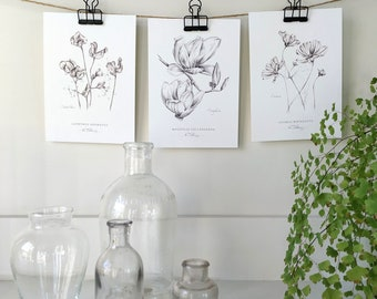 Set of 3 Flower Botanical Art Prints, in graphite, by artist Kristen Johns, for the gardener and flower lover, 8x10 inches, 5x7 inches