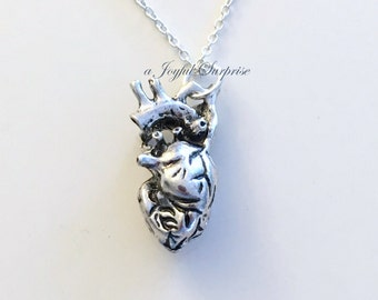 Human Heart Jewelry Anatomical Necklace Gift for Cardiac Nurse Surgeon Man Woman Anatomy charm present Sterling Silver Long Short Gothic