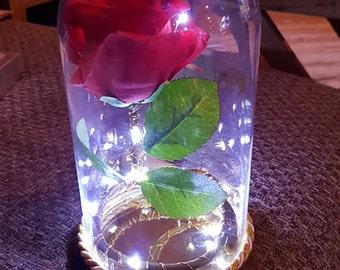 Enchanted Rose Dome Bell Jar Lamp Light Centre Piece