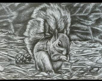 Hand-drawn Squirrel Print