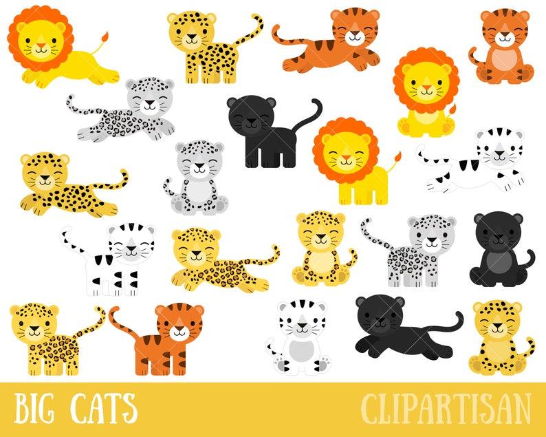 Großkatzen Clipart Löwe Tiger Leopard Snow Leopard Puma Panther Gepard Weiße Tiger