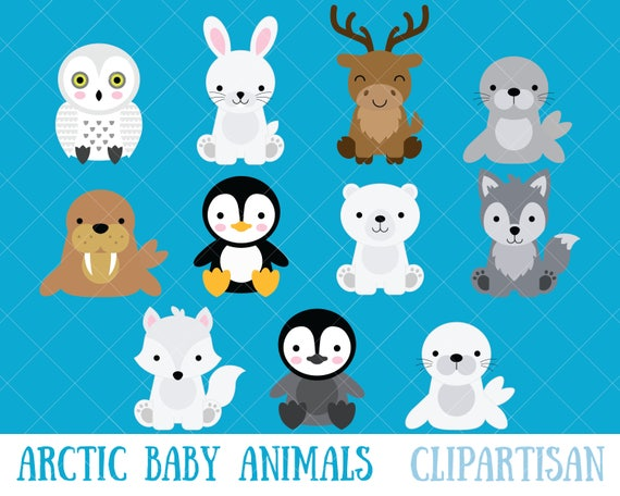 arctic baby animals clipart polar bear penguin etsy. Black Bedroom Furniture Sets. Home Design Ideas
