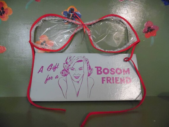 Funny Naughty Gag Gift Dirty Joke Bra Plastic Boso