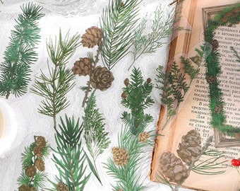 Pine Stickers: Forest Tea Party Collection