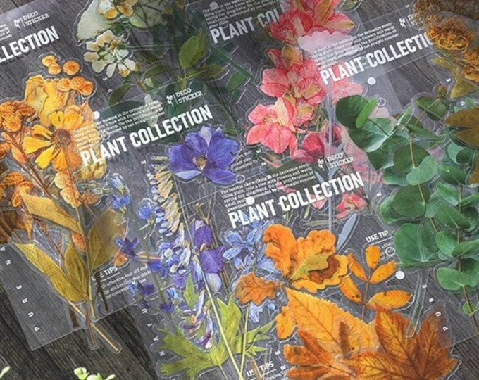 Plant Collection Stickers