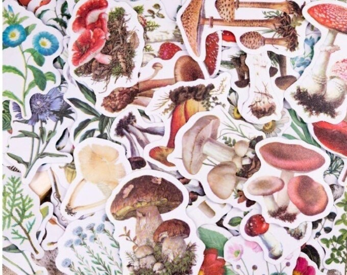 Simple Nature Stickers