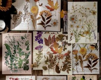 Flower Collage Stickers