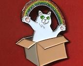Cat in the box enamel pin