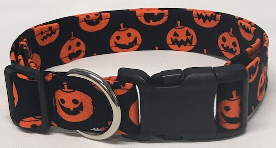Black fabric dog collar with orange jack-o-lanterns on it.