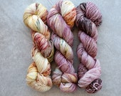 Sport Weight Yarn - Hand Dyed Superwash Merino Wool - Fade Set