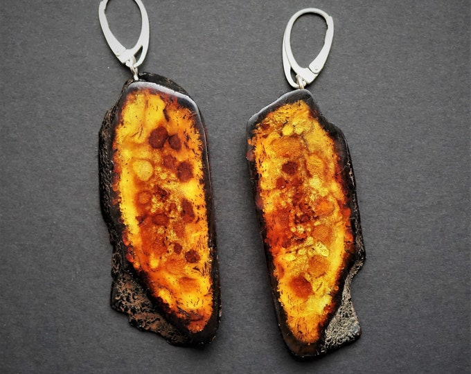 13,7g Large Baltic Amber Earrings