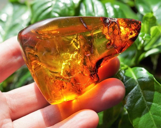 53g Genuine Baltic Amber Stone