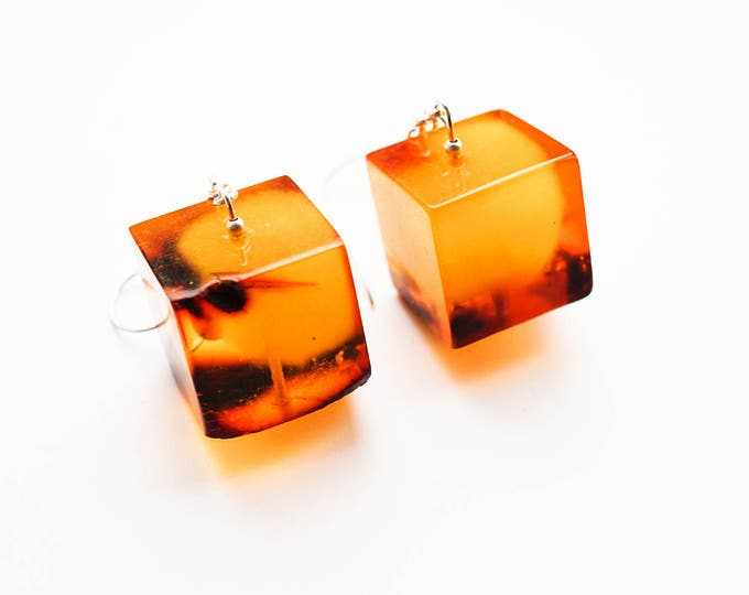 26g Huge Baltic amber earrings
