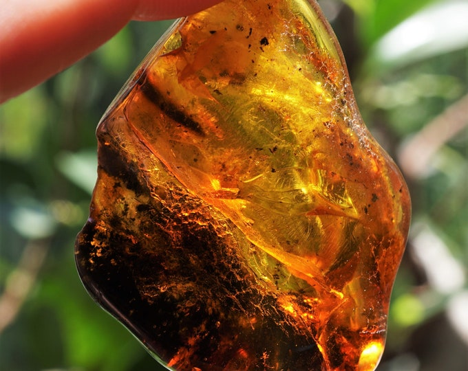 13,7g. Yellow Cognac Baltic Amber Stone, Genuine Baltic Amber, Collectors Amber