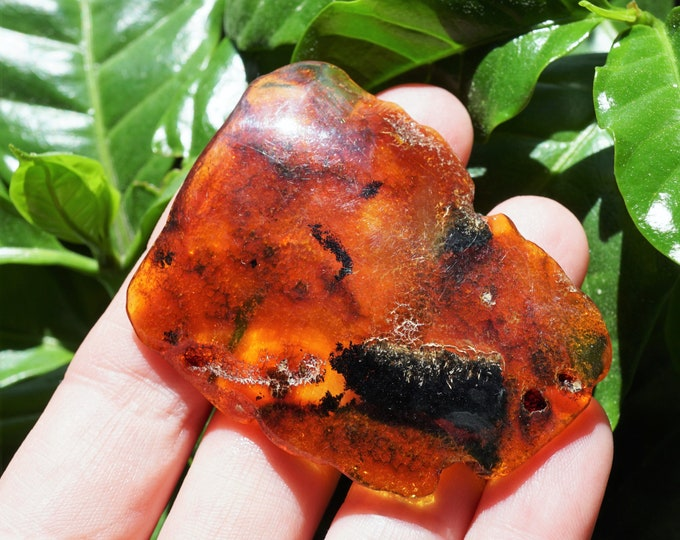 11,7g. Yellow Cognac Baltic Amber Stone, Genuine Baltic Amber, Collectors Amber