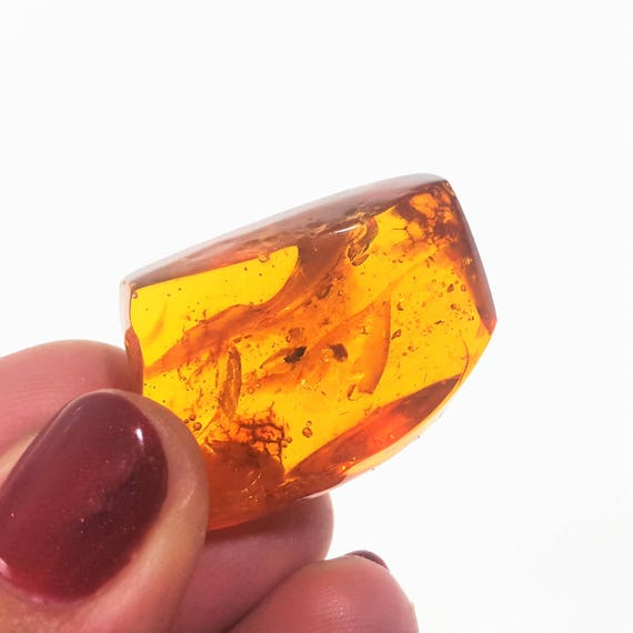 AMBER Stone With Insect Inclusion 9,3g