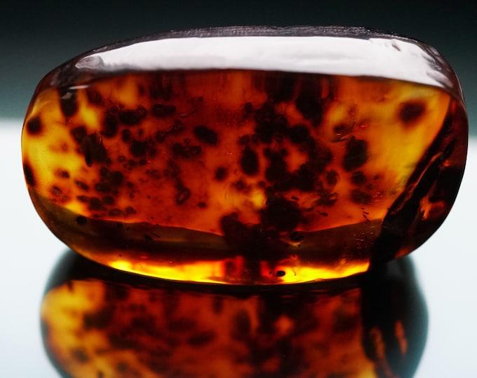 48g. Baltic Amber Cabochon, Natural Baltic  Amber  Stone, Huge Amber
