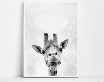 Giraffe Print Giraffe Poster Wall Art Print Animal Print Giraffe Art