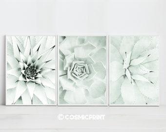 Cactus Wall Art Cactus Print  Cactus art Botanical Print Plant Print  Printable Art Print Download