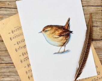 Wren watercolour fine art archival print, animal art,little bird nursery decor,Easter gift,giclee print, Wren Illustration,Spring home decor