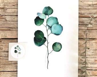 Eucalyptus watercolour fine art archival print and sticker, botanical art, gift, giclee print, green leaves Illustration,wall art,Home decor