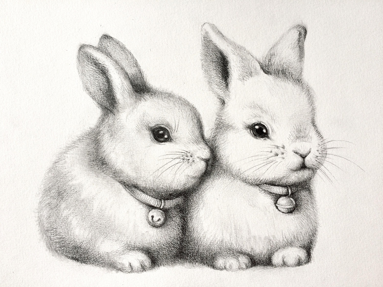 ORIGINAL cute bunnys pencil drawing rabbit couple sketch ...