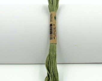 Valdani Hand-Dyed Cotton 6-Strand Embroidery Floss Skein: Solid #821 Olive Green Light