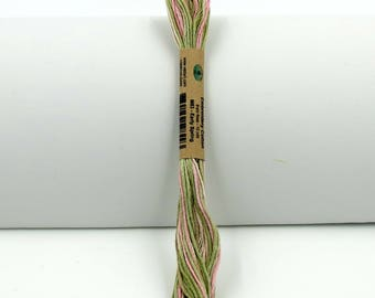 Valdani Hand-Dyed Cotton 6-Strand Embroidery Floss Skein: Variegated #M63 Early Spring