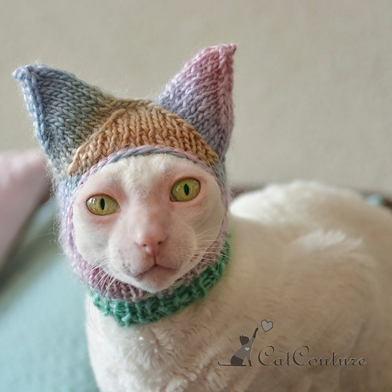 Hat For Cat Ears Covering Cat Hat Multicolored Handmade Hat Etsy