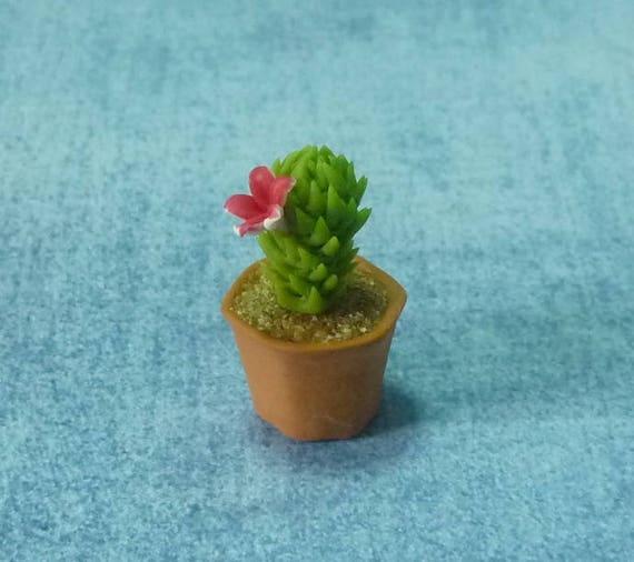 Miniature cactus red pink flower dollhouse miniatures fake etsy image 0 mightylinksfo