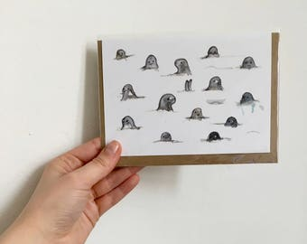 Seal friends card- illustrated greeting card- illustrations by Ruth Lillian Foulis- ruthlily draws