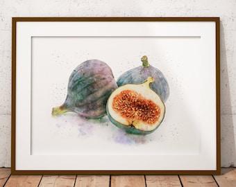 fig art print, botanical watercolor figs print kitchen art, watercolor painting, still life print kitchen wall decor, watercolor fruit print