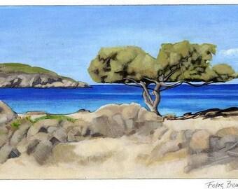Postcard - Felos Beach, Andros Island