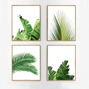 Set Of 4 Tropical Leaves Leaf Prints Set Green Wall Art Etsy Free for commercial use no attribution required high quality images. etsy