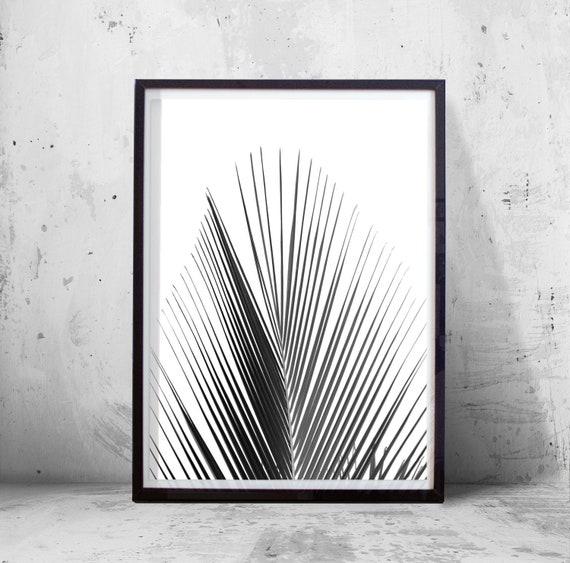 illustration botanique noir et blanc. Black Bedroom Furniture Sets. Home Design Ideas