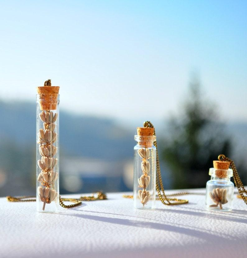 Lavender Necklace bottle pendant Dried lavender pendant Real plant necklace Botanical jewellery Vial pendant