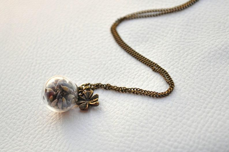 Real plant necklace Lavender Necklace Glass globe necklace ON SALE Botanical jewellery Glass globe necklace Dried lavender pendant