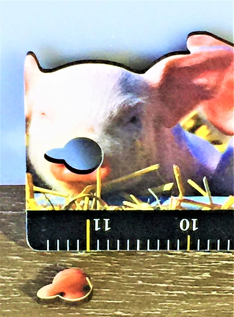 "MINT Condition Shackman 12/"" PIG RULER Die Cut Hangable Made in Germany Rare"