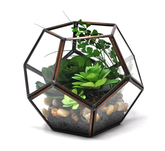 Geometric Open Top Terrarium Greenery Collection Etsy