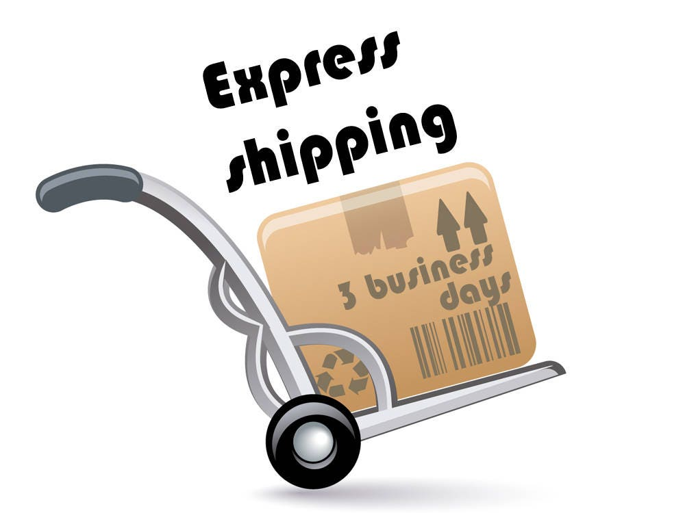629f54435dbbf Express Delivery Upgrade. Fast Shipping Upgrade With DHL, TNT or ...