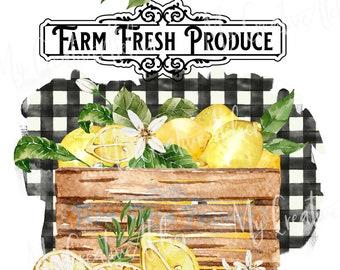 Lemon farm Buffalo check digital watercolor design PNG file 300dpi super high quality