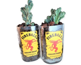 Fireball Whisky Planter Or Vase / Cut Bottle / Succulent Planter / Whiskey Gift / Boyfriend Gift / Indoor Planters / Cactus Plant / Garden