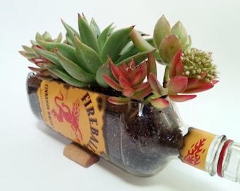 Fireball Whisky Succulent Planter / Whisky Cut Bottle Alcohol Gift / Gift Ideas For Boyfriend / Bottle Garden / Indoor Cactus Garden