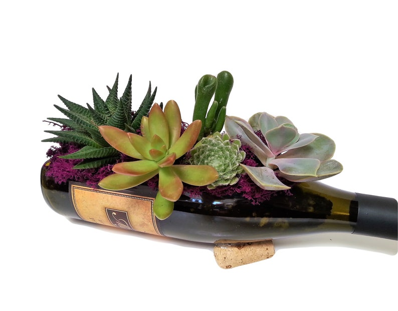 1 Wine Bottle Tray / Wine Lover Gift / Succulent Planter / image 5