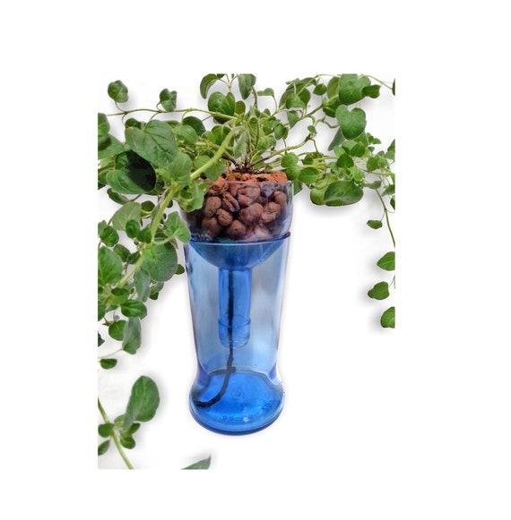 indoor herb planter in blue glass hydroponic herb garden etsy. Black Bedroom Furniture Sets. Home Design Ideas