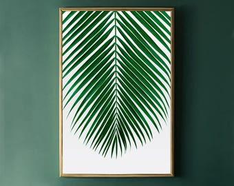 Palm Leaf Print Etsy