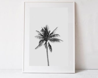 Palm PRINTABLE ART Palm Tree Print, Black and White Palm Tree Poster Print, Tropical Art, Palm Tree Photography Dorm Decor Instant Download