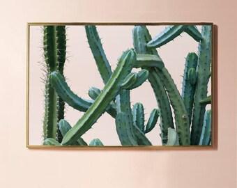 Large Photo Print,Botanical Print DOWNLOAD Art, Cactus Photography, Blush Pink Decor, Plant Printable Wall Art, Digital Print Horizontal Art